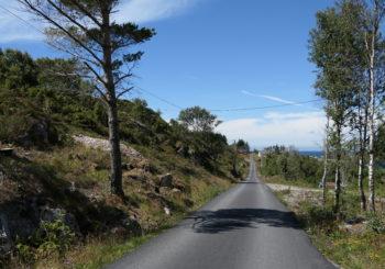 Utsiktsrydding Lyngholmen – Eltravåg, Sveio