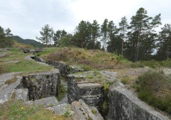 Første halvår 2019: utsiktsrydding, Kubbervik, Tittelsnes Fort
