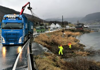 Andre halvår 2019: linjerydding, rydding langs E134, turveg Ølensvåg – Eikås, tennisbane Etne