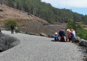 Første halvår 2020: utsiktsrydding Etne, planting av gran, turvegen Ølensvåg – Eikås, turveg Himakånå, Kubbervik
